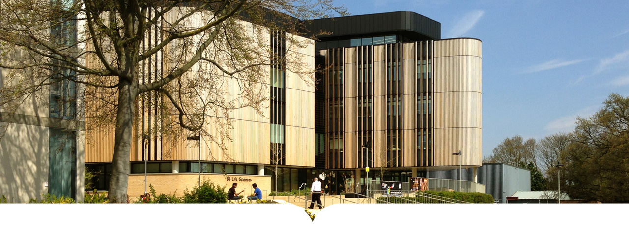 Southampton Üniversitesi