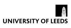 Leeds Üniversitesi